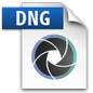 Digital Negative Image File Icon
