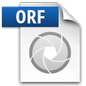 Olympus ORF File Icon